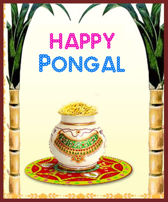583 x 700 jpeg 101kB, Posts belonging to Category Happy Pongal 2012